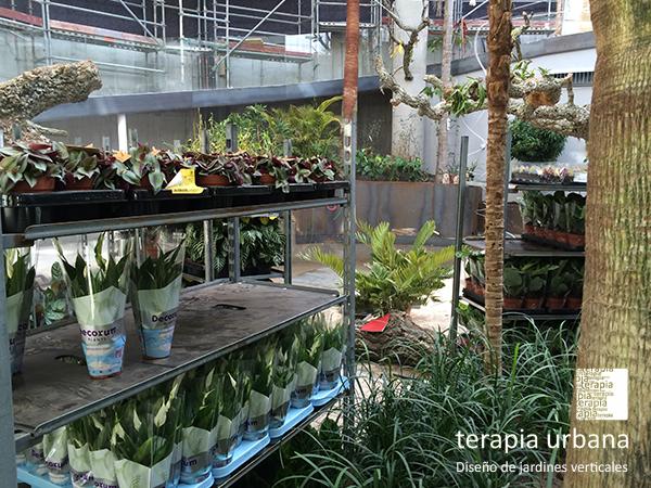 M s de 200 metros cuadrados de jardines verticales en el for Agro jardin estepona