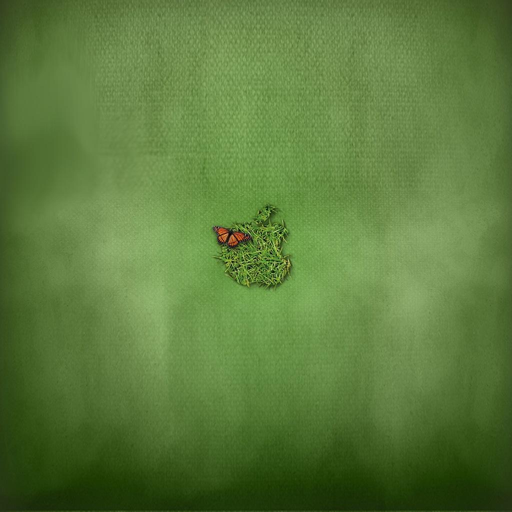 http://3.bp.blogspot.com/-VWsjVuc1438/Tz_fCECBedI/AAAAAAAAAWQ/Y2GiiodWp_E/s1600/apple-green-1024x1024.jpg