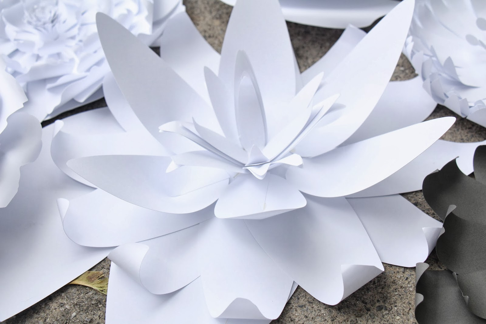 Grosgrain Paper Flower Wall With Silhouette Patterns