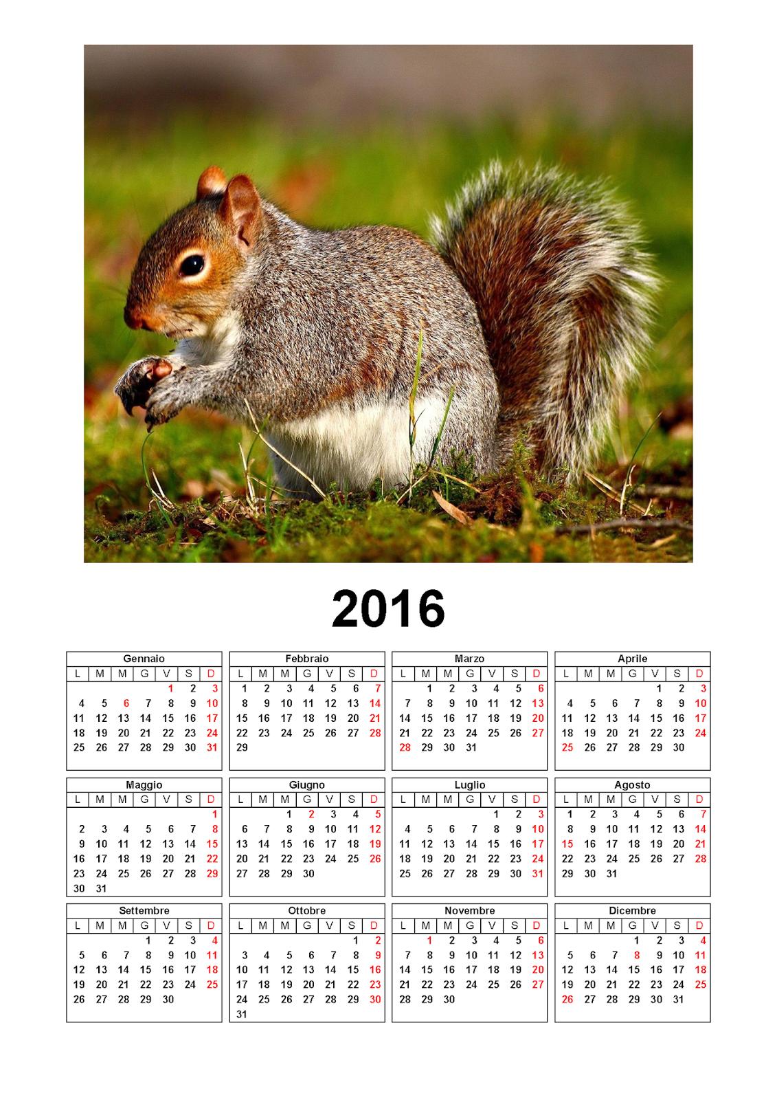 calendario 2016 - mensile - annuale - scoiattolo