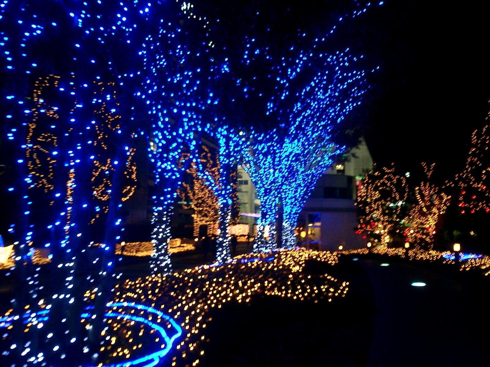 Liv N' Luv Japan: Christmas in Japan!