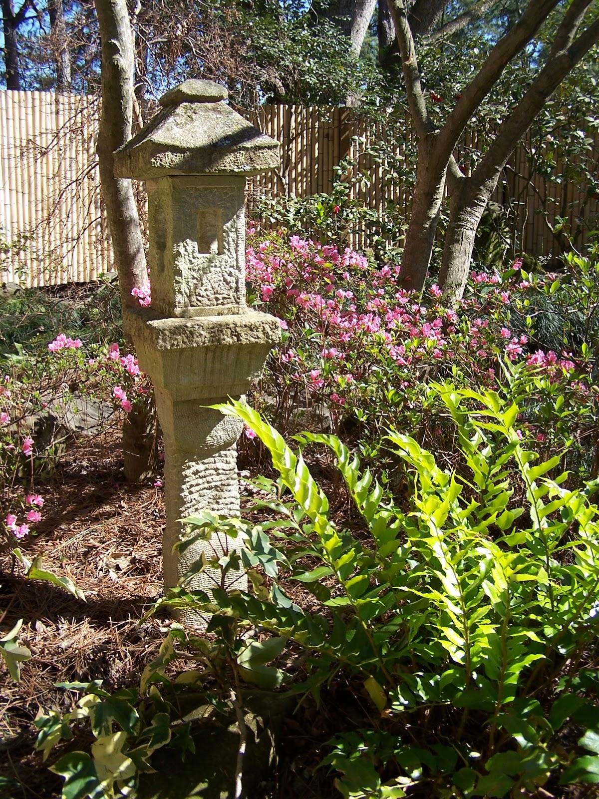 TARA DILLARD: winter garden