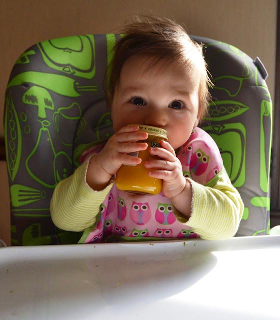 Beechnut Organic Baby Foods