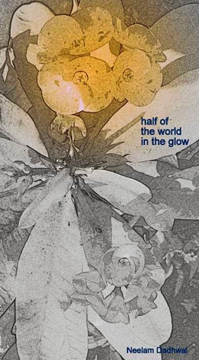 World Haiku Association November Contest
