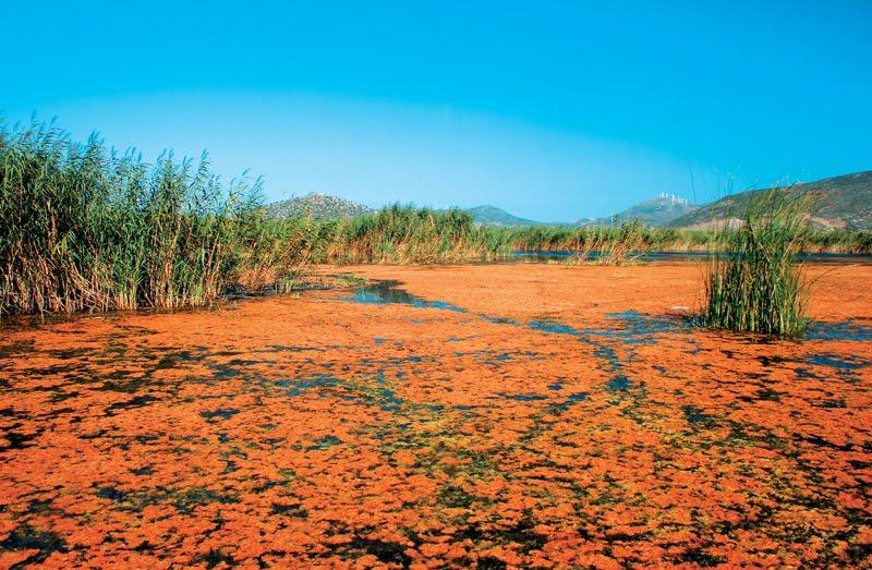 Η λίμνη του Δύστου που χάνεται...