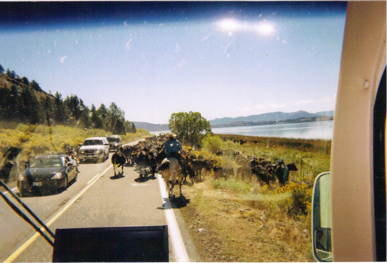 Travel Blog By Arlon Boozer Elko Nevada