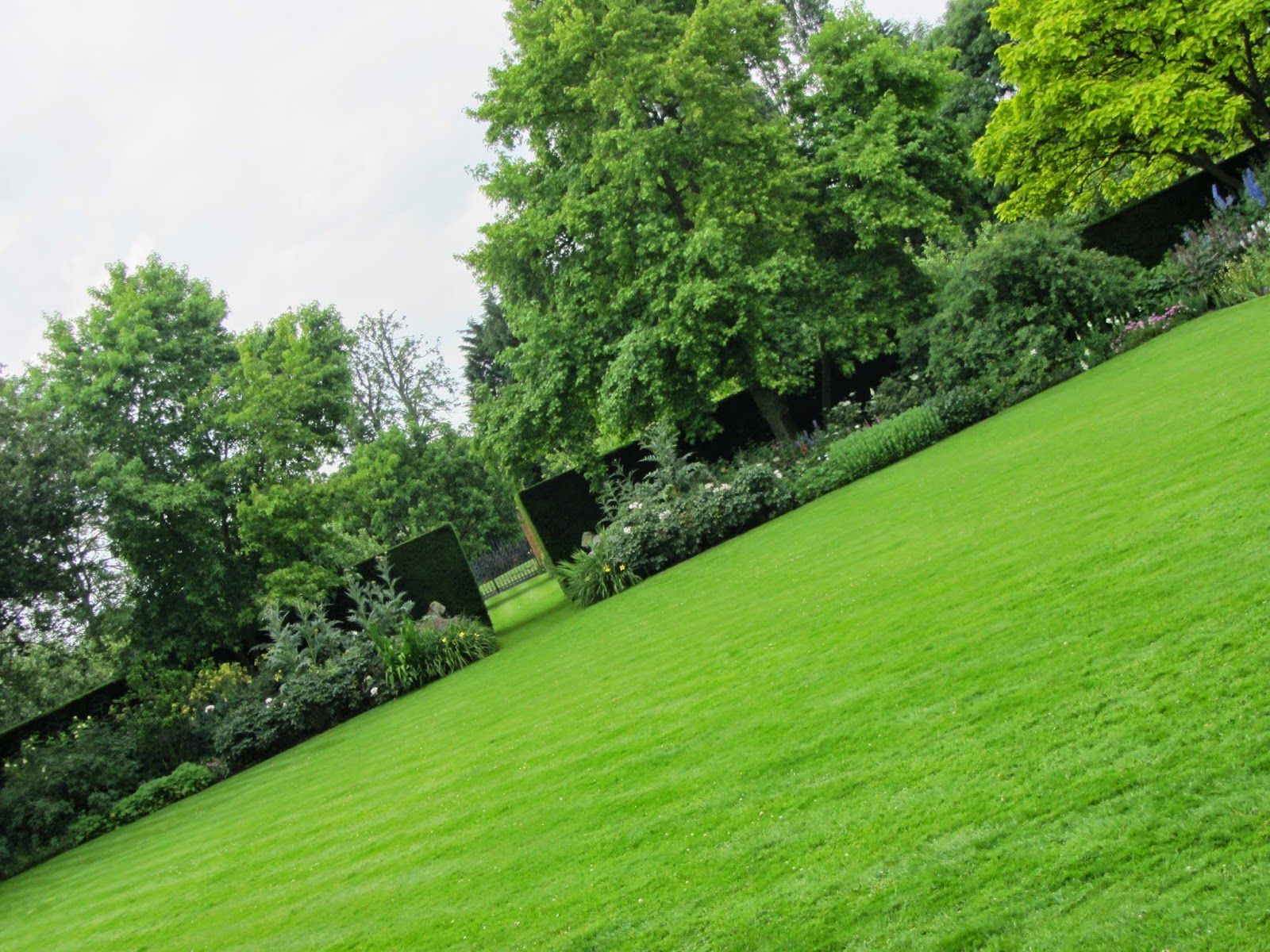 Ham photos rear garden at ormeley lodge - As Did The Lawn
