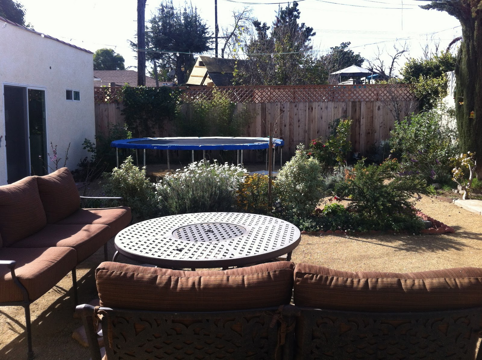 2018 mar vista green garden showcase 3741 moore street the front yard of this do it yourself garden started in the summer of 2009 followed by the backyard in the fall of 2011 first shown in 2012 solutioingenieria Gallery