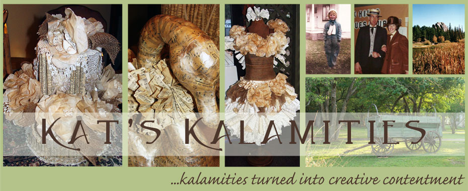 Kat's Kalamities