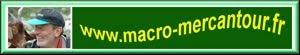 Macro-Mercantour
