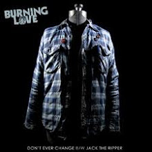 "Don't Ever Change 7"" (2010)"
