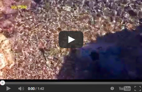 Άρτεμις - Το νερό στα βραχάκια