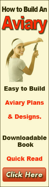 build an aviary