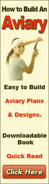 build an aviary