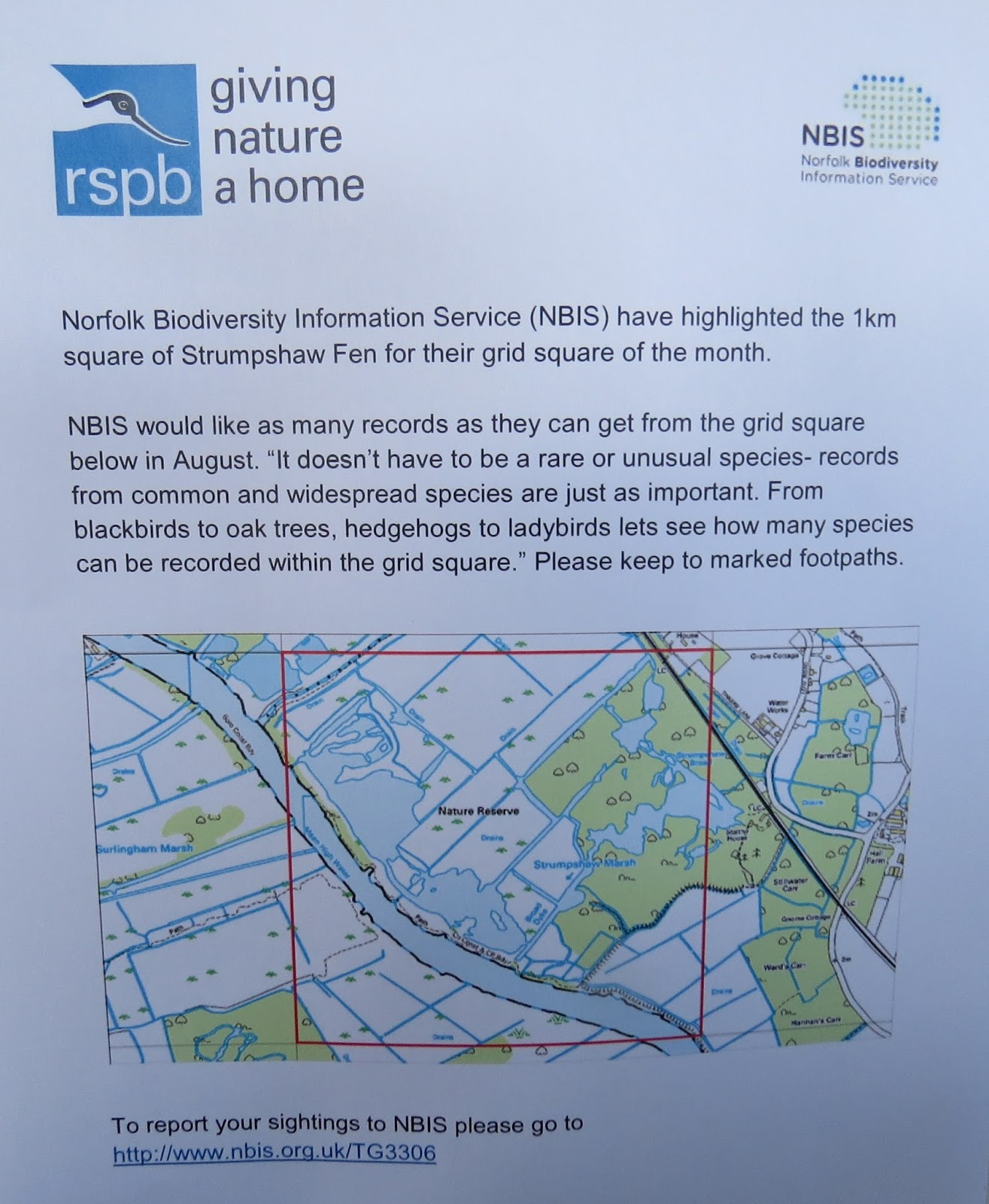 The Autistic Naturalist Aug 5th Strumpshaw Fen