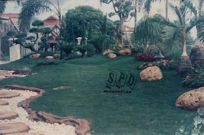 taman hijau, jasa dekroasi taman rumput