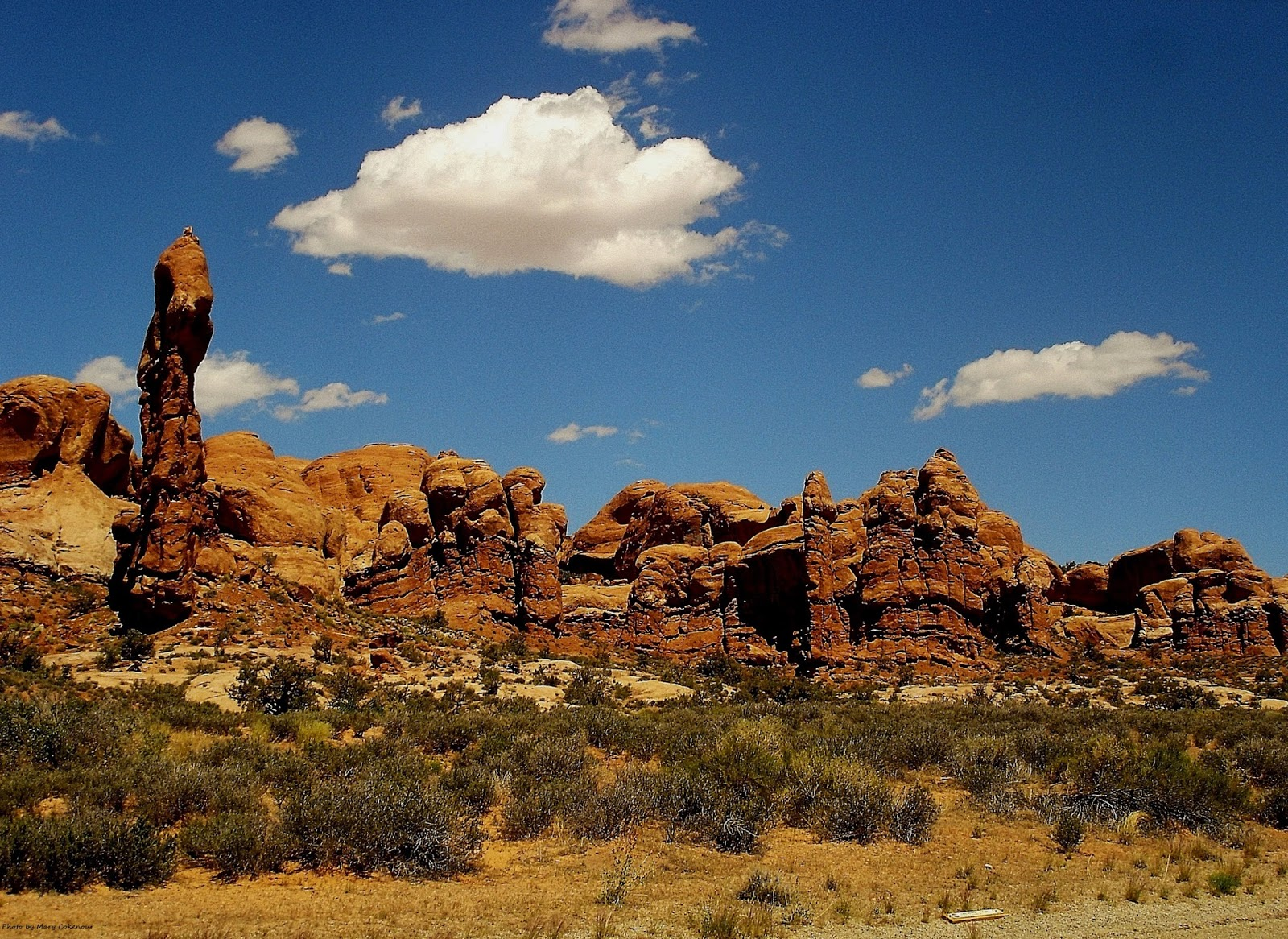 The Southwest Through Wide Brown Eyes Arches National Park Windows Caves Elephants And A Garden