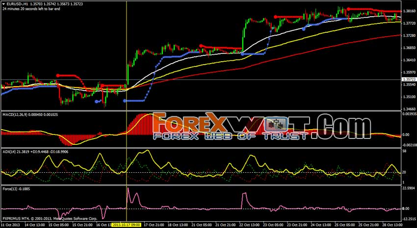 Forex hedge fund trader