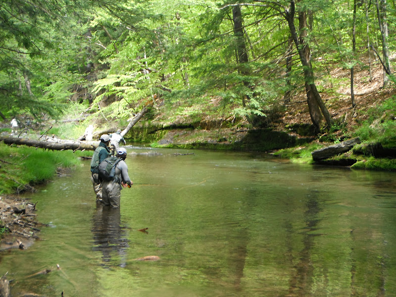 D h central pennsylvania trout trip for Fishing trips in pa