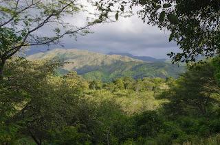 Sierra del Perijá. Cerca de Urumita. Colombia. Ruta del Vallenato.