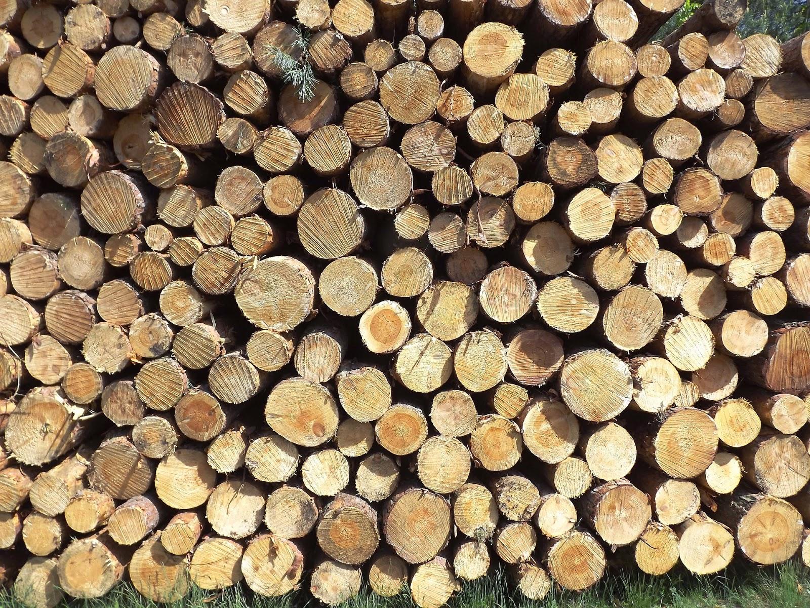 Πώς μπορούμε να ελέγξουμε τα ξύλα που αγοράζουμε για το τζάκι μας ή την σόμπα;