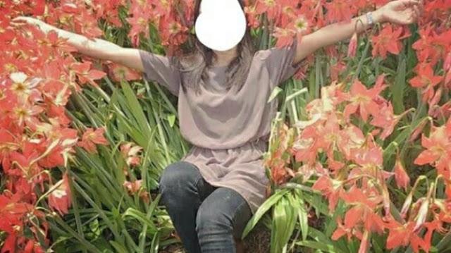 Kebun Lily Gunungkidul Rusak Terinjak-injak, Ini Komentar Pemiliknya