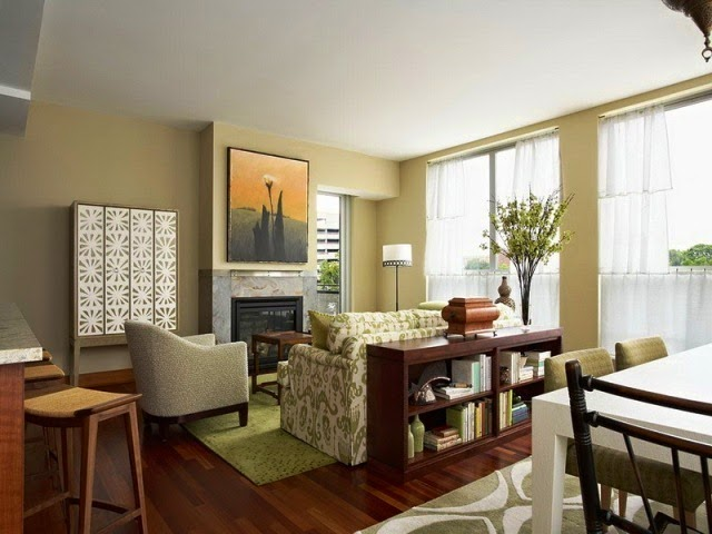 paint ideas for apartment living room