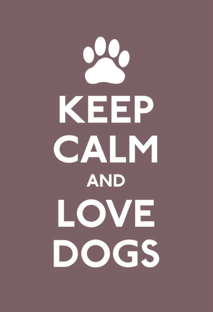 Love Dogs Quotes Wallpaper : The Shelter Girl: March 2012