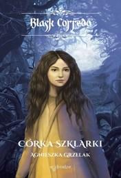 http://lubimyczytac.pl/ksiazka/25220/corka-szklarki