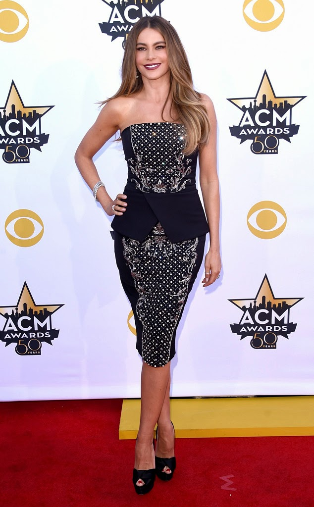 2015 Academy of Country Muzik