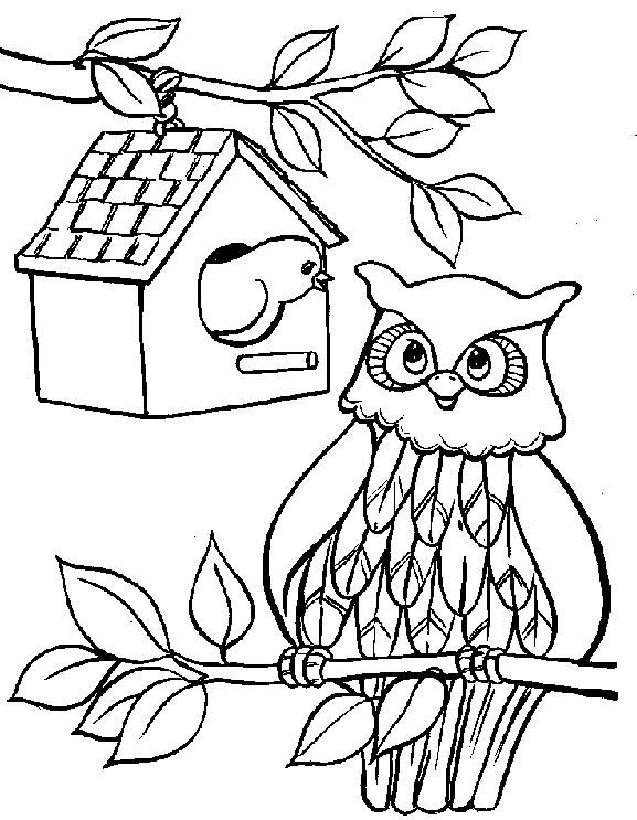 desenhos para pintar