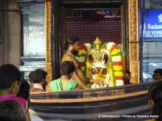 Lord Venkateswara on Simha Vahanam - 4