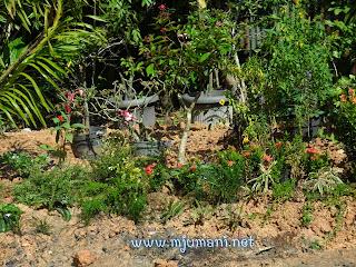 cara membuat miniatur taman bunga