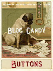Blog Candy Give Away!!!