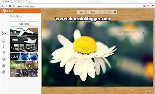 Edita tus fotos con la extensión de PicMonkey para Chrome