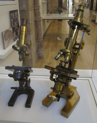 Victorian microscopes
