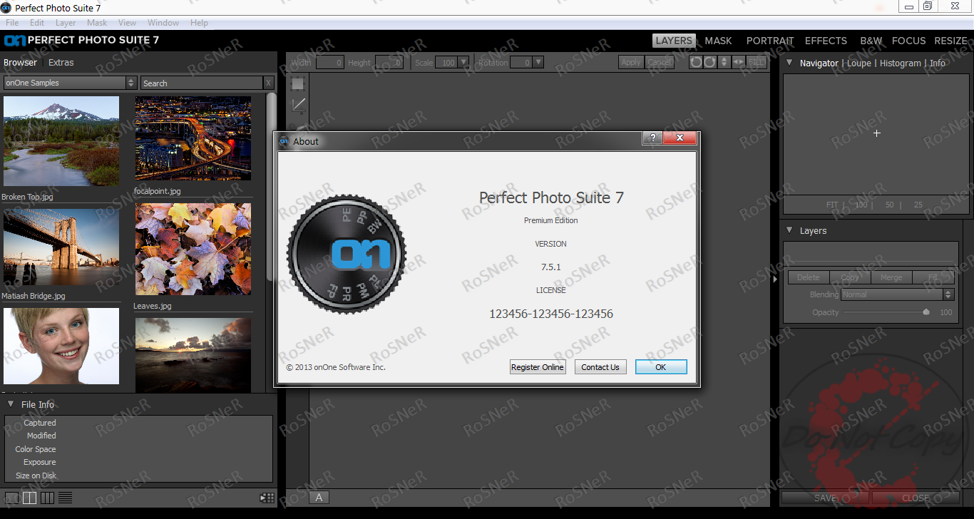 Perfect photo suite v. 5.5.4 keygens