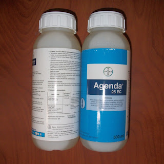 Termitisida Agenda 25EC 500 ml