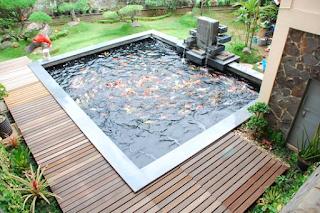 Desain Kolam Ikan Minimalis Terbaik dan Modern