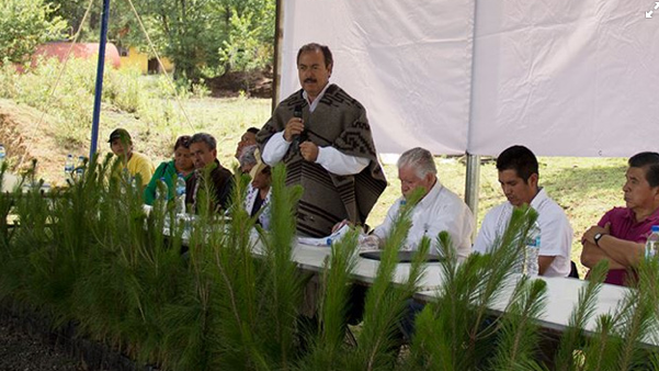 http://www.mimorelia.com/noticias/michoacan/reforestaran-los-bosques-en-cheran-a-traves-del-programa-de-empleo-temporal/140605
