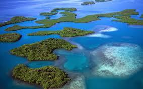 Best Honeymoon Destinations In India Andaman And Nikobar Islands