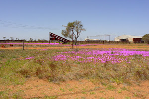 Gabyon yards, 2009