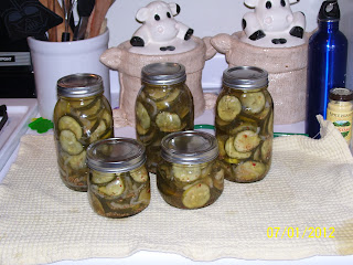 Bread-and-Butter_Pickles_Homemade_1