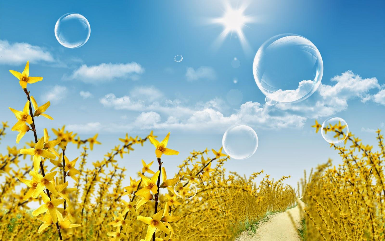 خلفيات طبيعية لفصل الصيف