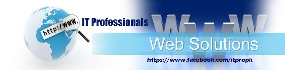 IT Professionals Web Solutions