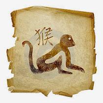 მაიმუნი