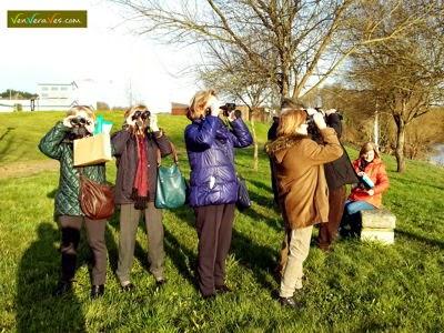 Grupo de alumnos de Cuarto Ciclo observando aves con prismáticos en el río Miño en Lugo