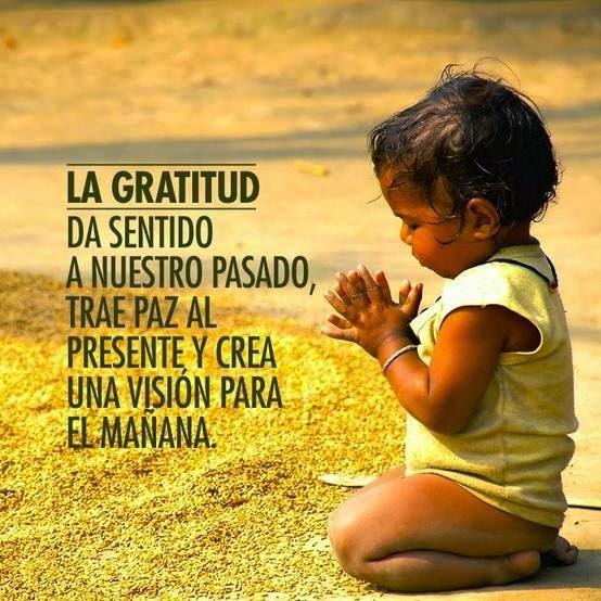 Frases Sobre La Gratitud Para Reflexionar