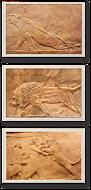 Relieve de Nínive