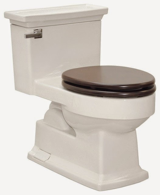 One Piece Toilet with Maple SoftClose Sea